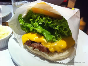 Cheese salada - Burguer Place